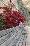 Una panchina a colori