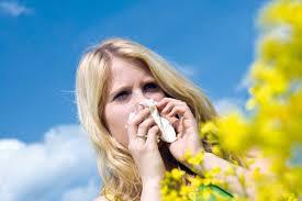 immagini_articoli/1368048155_allergie.jpg